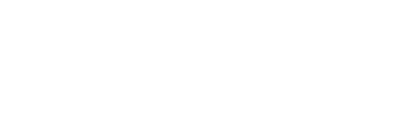 Wyoming County Examiner